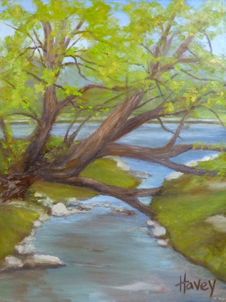 "Creekside Branchs 12""x9"" Oil copy"